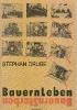 Bayerische Bauern_1